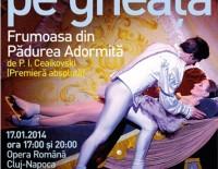 frumoasa-padurea-adormita-balet-gheata-opera-romana-cluj-napoca
