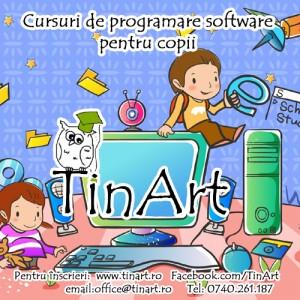 cursuri programare software