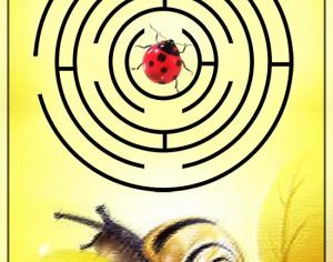 Melcuşor merge în vizită la buburuză – Labirint